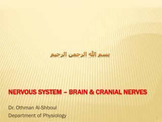 Nervous System – Brain & cranial nerves