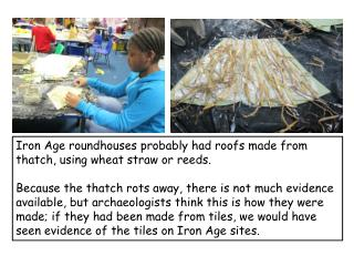 Iron Age roundhouses probably had roofs made from thatch, using wheat straw or reeds.