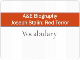 A&E Biography  Joseph Stalin: Red Terror