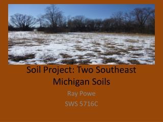Soil Project: Two Southeast Michigan Soils