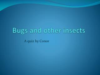 Bugs and other insects