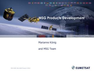 MSG Products Development