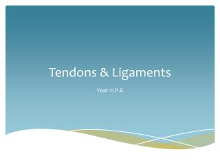 Tendons & Ligaments