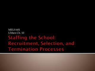 Staffing the School: Recruitment, Selection, and Termination Processes