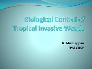R. Muniappan IPM CRSP