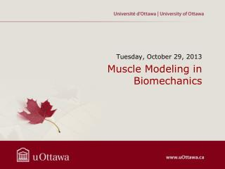 Muscle  Modeling  in Biomechanics