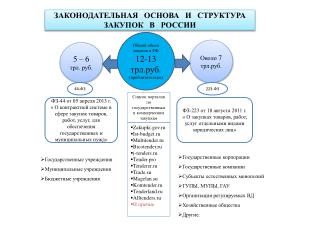 Общий объем закупок в РФ 12-13  трл.руб .  (приблизительно)