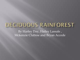 Deciduous rainforest