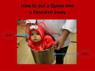 What is the purpose of the study in research proposal