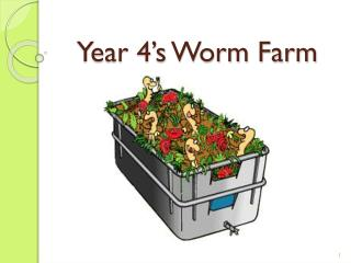 Year 4's Worm Farm