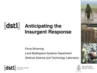 Anticipating the Insurgent Response