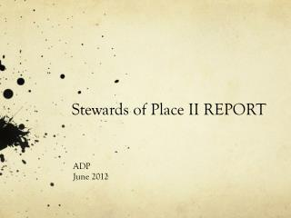 Stewards of Place II REPORT