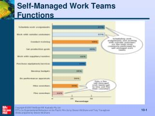 Self-Managed Work Teams Functions