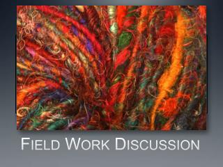 Field Work Discussion