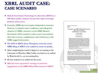 XBRL AUDIT CASE: CASE SCENARIO