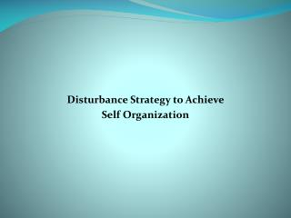 Disturbance Strategy to Achieve  Self Organization