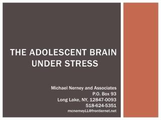 The adolescent brain  under stress