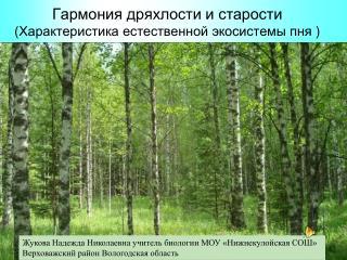 Гармония дряхлости и старости ( Характеристика естественной экосистемы пня  )