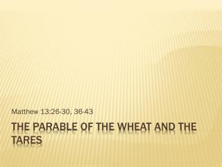 The parable of the wheat and the tares