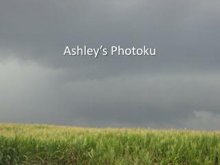 Ashley's  Photoku