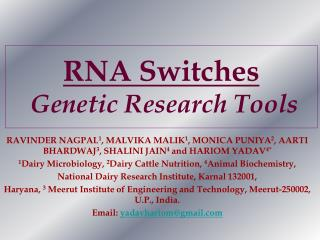 RNA Switches    Genetic Research Tools