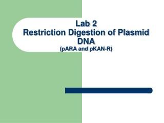 Lab  2  Restriction Digestion of Plasmid DNA ( pARA and  pKAN -R)
