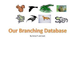 Our Branching Database