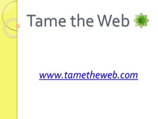 Tame the Web