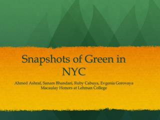 Snapshots of Green in NYC