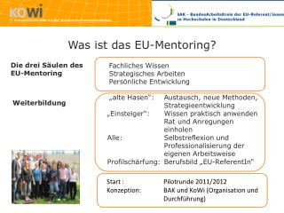 Was ist das EU- Mentoring ?