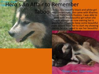 Hero's An Affair to Remember Taboo
