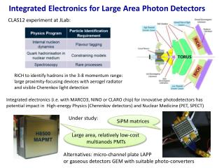 Integrated Electronics for Large Area  P hoton Detectors