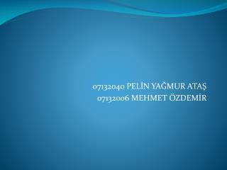 07132040 PELİN YAĞMUR ATAŞ 07132006 MEHMET ÖZDEMİR