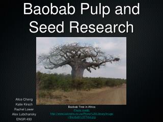 Baobab Pulp and Seed Research
