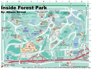 Inside Forest Park By: Allison Stroud