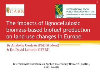 The impacts of lignocellulosic biomass-based biofuel production on land use changes in Europe