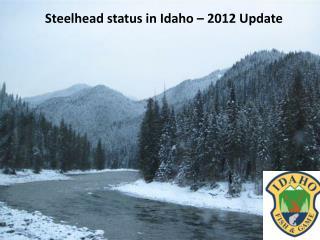 Steelhead status in Idaho – 2012 Update
