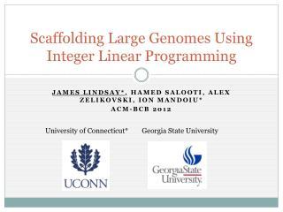 Scaffolding Large Genomes Using Integer Linear Programming