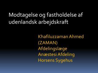 Modtagelse og fastholdelse af udenlandsk arbejdskraft Khafiluzzaman  Ahmed (ZAMAN)
