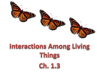 Interactions Among Living Things  Ch. 1.3