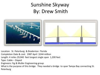 Sunshine Skyway  By: Drew Smith