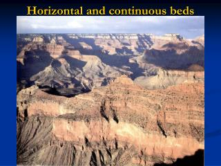Horizontal and continuous beds