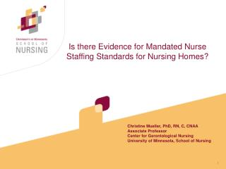 Is there Evidence for Mandated Nurse Staffing Standards for Nursing Homes
