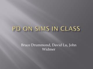PD on  sims  in class