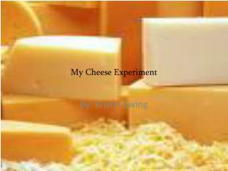 My Cheese Experiment