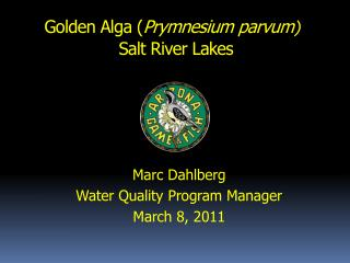 Golden Alga ( Prymnesium parvum )  Salt River Lakes
