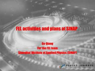 FEL activities and  plans  at  SINAP