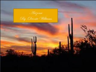 Arizona By :Deonte Williams
