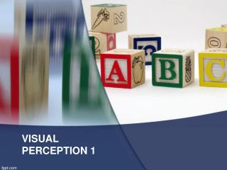 VISUAL PERCEPTION 1