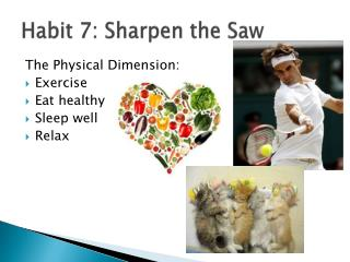 Habit 7: Sharpen the Saw